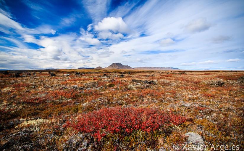 Paysage d'automne en Islande
